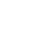 Bio Resist - Libre de siliconas, colorantes y parabenos